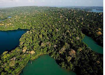 Barro Colorado Island in the Gatun Lake, Panama